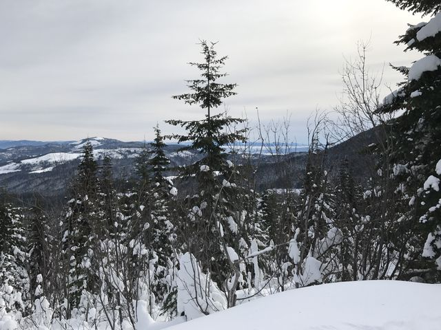 View from back of Quartz Mountain