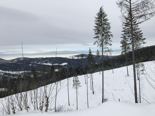 Clearcuts along Upper Outer Limits open up spectucular views