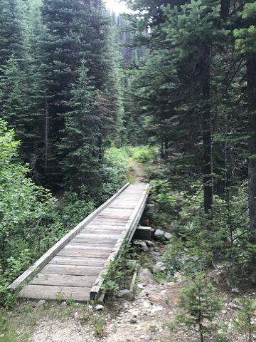 Bridge and boardwalk across Myrtle Creek