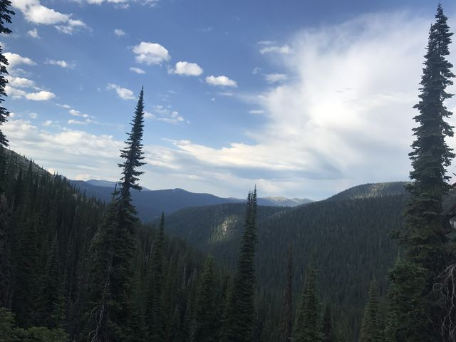 View from ridge above Myrtle Creek