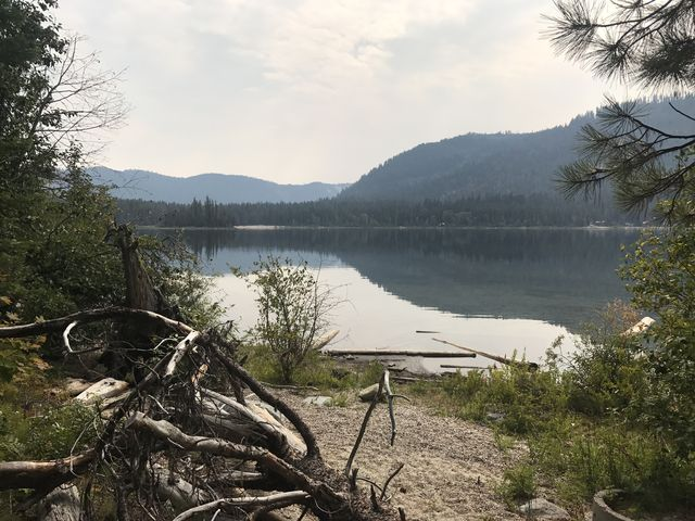 A sandy beach on Lake Wenatchee