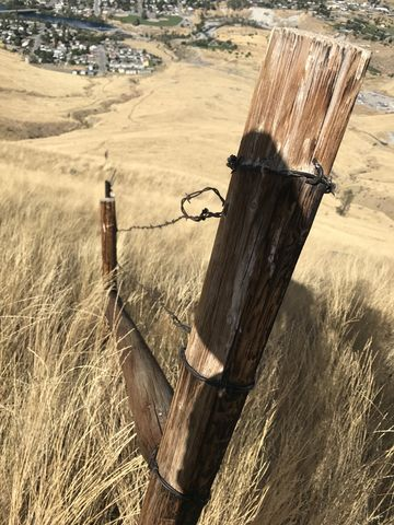 Barbed-wire fence along the trail