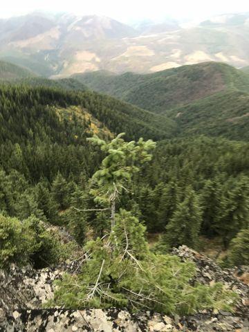 View towards Montana