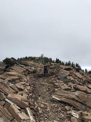 Sentinel Peak is mostly talus