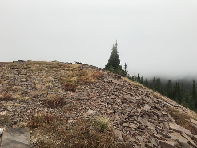 Pond Peak was largely shrouded in clouds