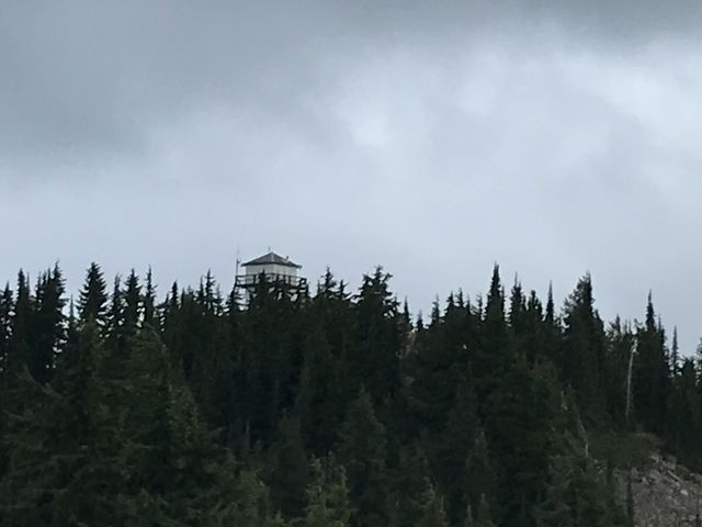 The lookout tower getting closer and closer. Shortly past Guard Peak the trail rejoins the forest road