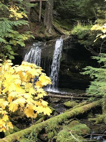 Fern Falls framed by fall foliage