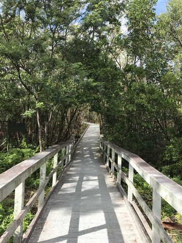 Most of the trail is boardwalk