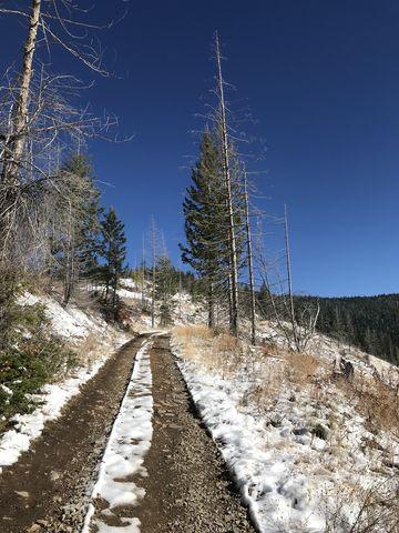 FR 2309 below Boise Peak