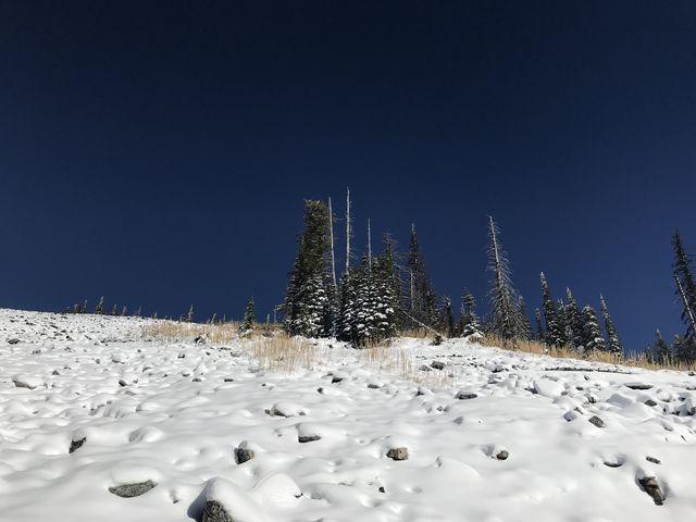 Looking up at the saddle between Boise Peak and Latour Peak