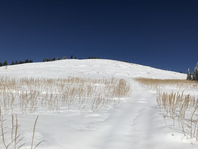 Old ATV trails are visible beneath the snow. Looking at the top of Latour Peak