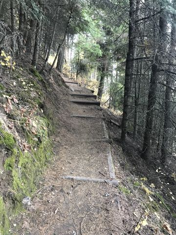The single-track is wide and well taken care of