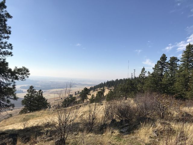 View from Kamiak Butte