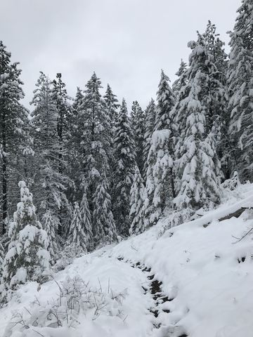 The trail was relatively easy to find, despite the snow, but loose rocks made for treacherous footing