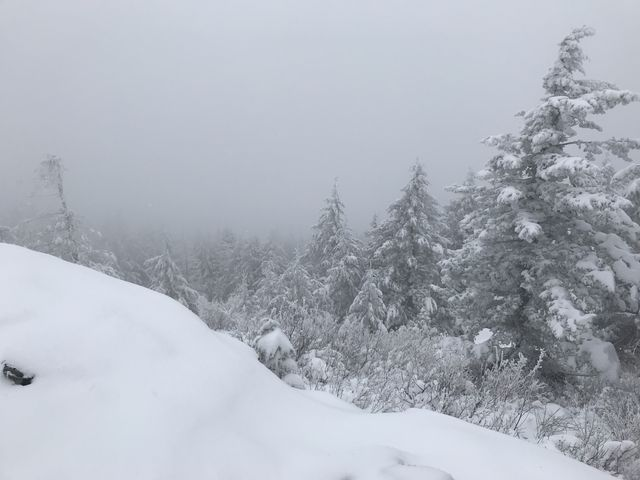 The view from Blacktail Mountain. It was grand as long as you like white