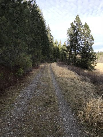 Much of the Turtle Rock trail is an old gravel road