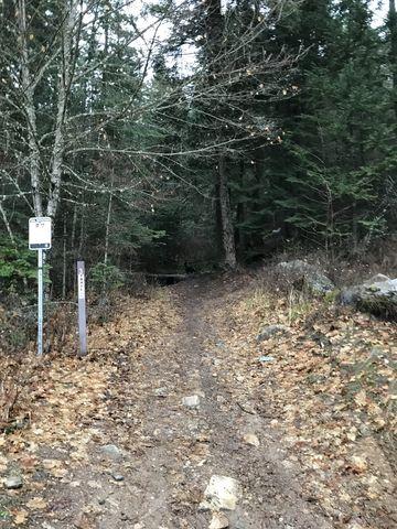 Trail #3 near trailhead