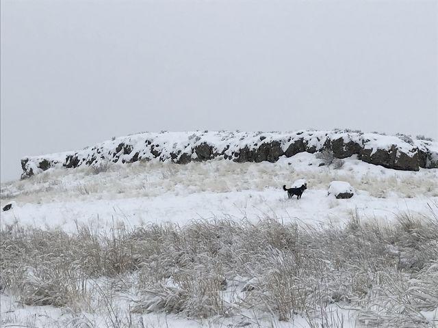 Many rock formations make for a varied landscape