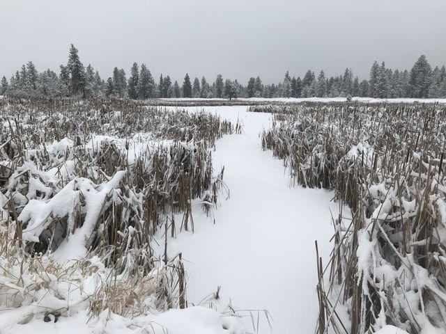 30 Acre Lake