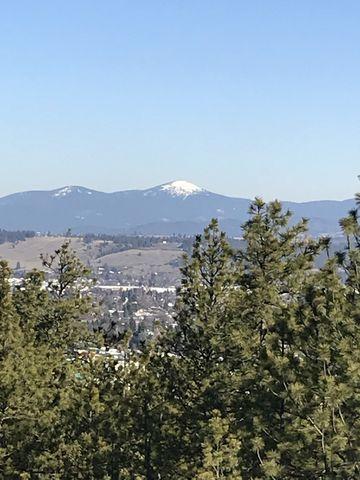 Mount Spokane in the distance