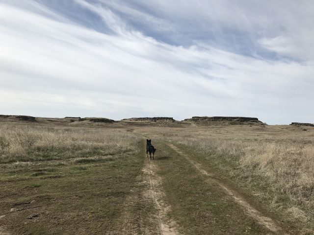 Much of the trail makes use of old farm roads. Mesas in the distance