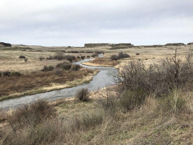 Rock Creek, as it meanders towards Towell Falls (left)