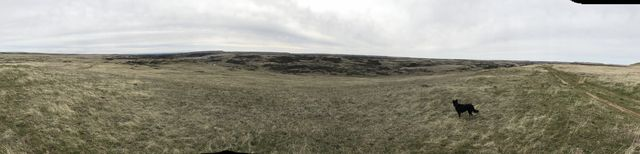 Panorama shot from the eastern side of Rock Creek, with the flat-topped basalt outcroppings in the distance
