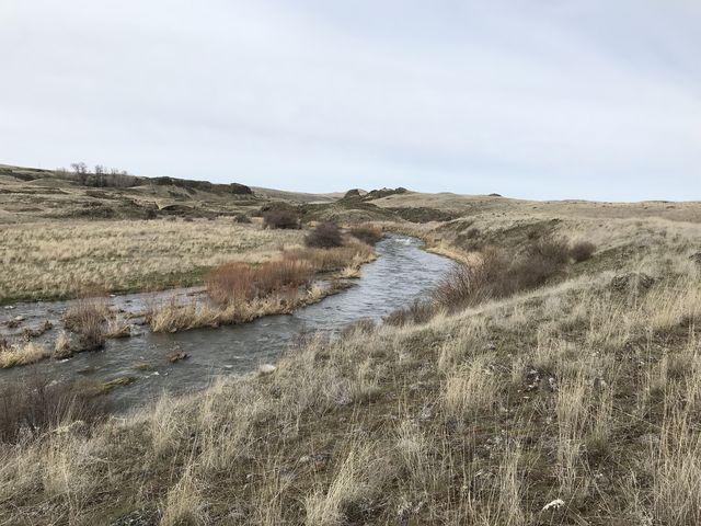 Rock Creek, taken from the eastern bank