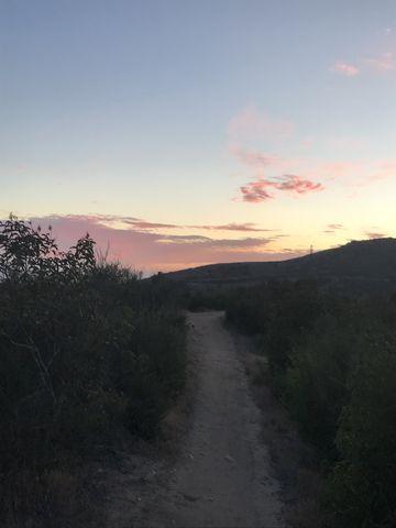 Sage Scrub Trail