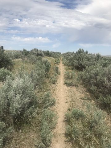 More sagebrush and barbed wire. Better get used to it!