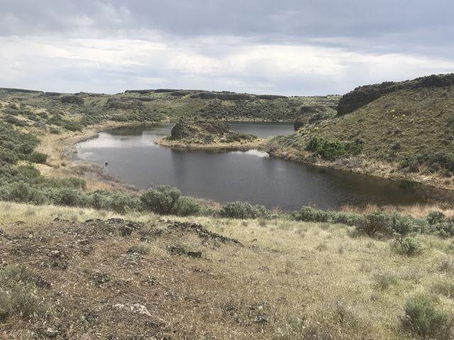 A pretty seasonal pond along the Lakeview Ranch trail