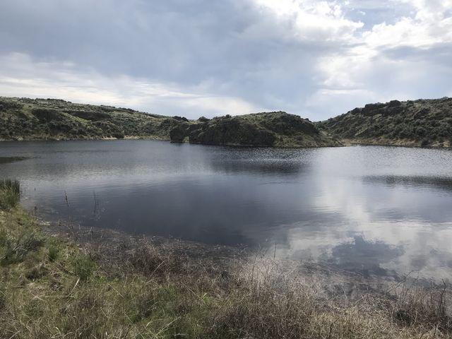 More of said pond