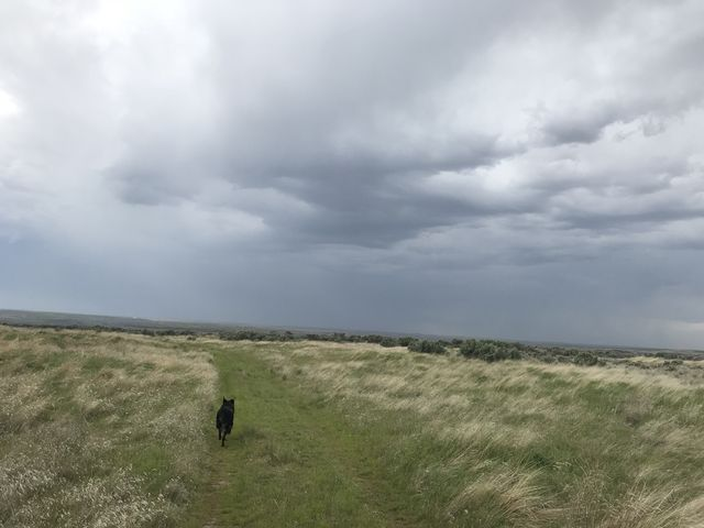 A few miles from the trailhead, with a thunderhead pushing in