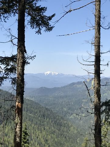 View west. Thats likely snow-covered Mount Spokane