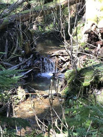 A small waterfall in Hells Creek
