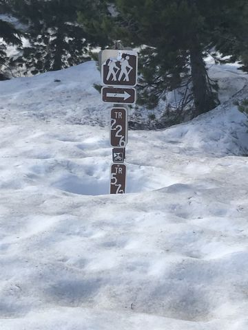 Trail signage at the trailheads is helpful. Actually, necessary, since the arrow merely points at an expanse of snow…