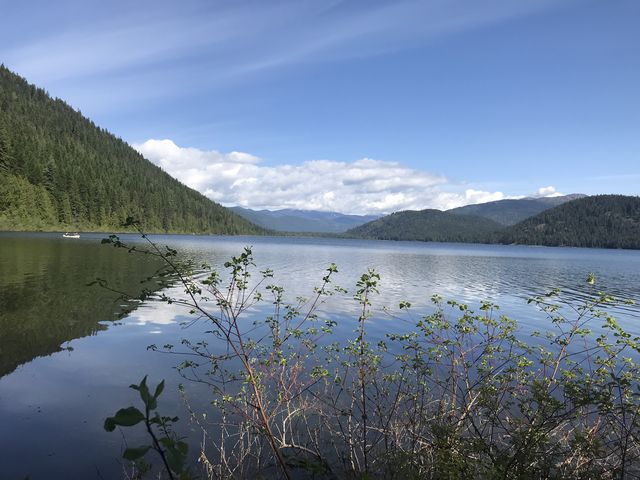 Upper Priest Lake from Plowboy Campground