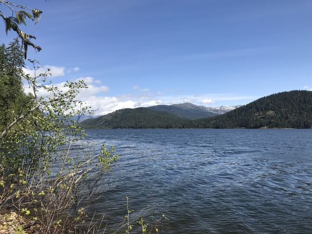 Upper Priest Lake from Navigation trail