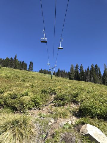 Youll move beneath most chairlifts