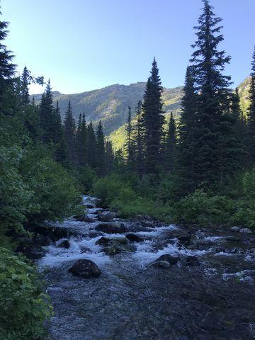 Swamp Creek