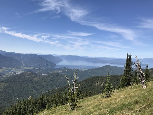 View of Lake Pend Oreille from a mountain meadow