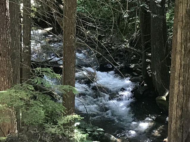 East Fork Bull River