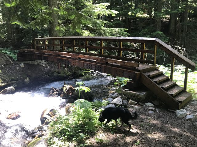 Bridge over Placer Creek. No wet feet on this hike!