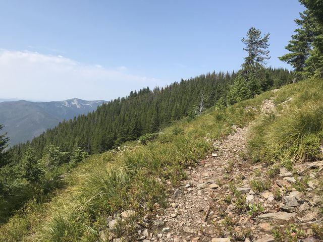 Alpine meadows await near the top