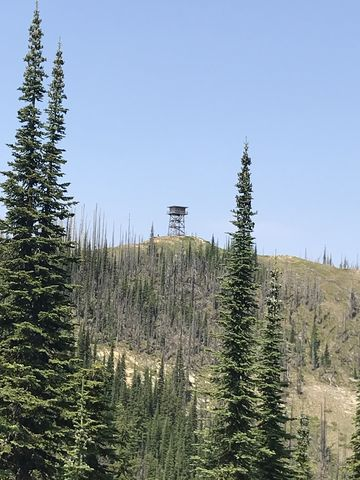 The tower, taken from the junction with trail #1028
