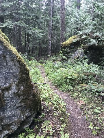 In the upper section of trail 978, the incline gets steeper and winds past large boulders