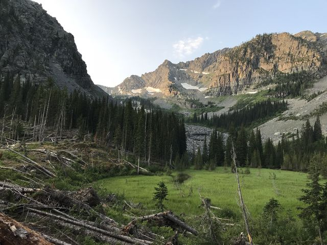 The meadow and Lentz Peak in morning light