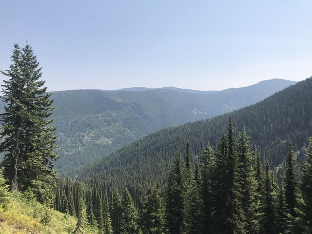 Shortly after the fork to Hoodoo Lake, the forest retreats and views open up