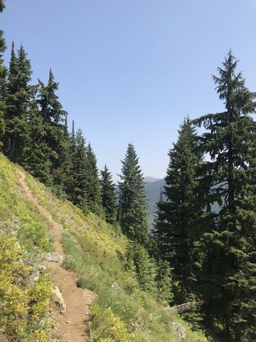 The trail crosses this steep alpine meadow
