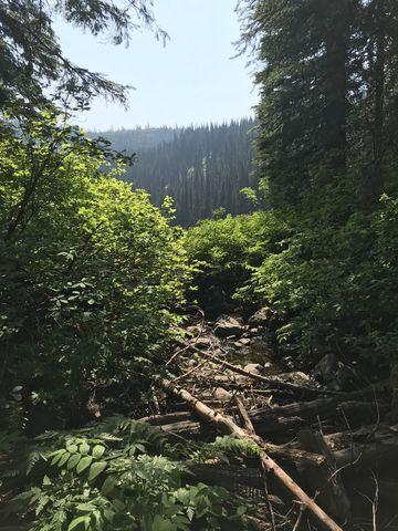Lake Creek, just below the lake